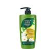 Follow Me Green Tea Shampoo Damage Repair 650Ml